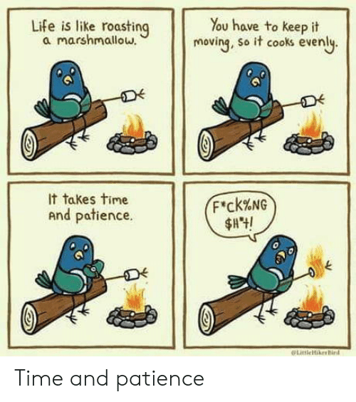 Patience: Life is like roasting  a marshmallow.  You have to keep it  moving, so it cooks evenly.  It takes time  F'ck%NG  And patience.  LitleikerBird Time and patience