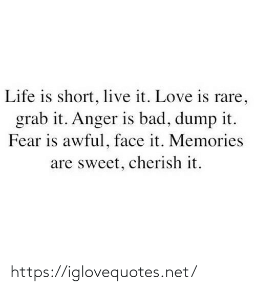 Love Is: Life is short, live it. Love is rare,  grab it. Anger is bad, dump it.  Fear is awful, face it. Memories  are sweet, cherish it. https://iglovequotes.net/