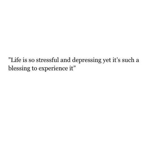 "Life, Experience, and Depressing: ""Life is so stressful and depressing yet it's such a  blessing to experience it"""