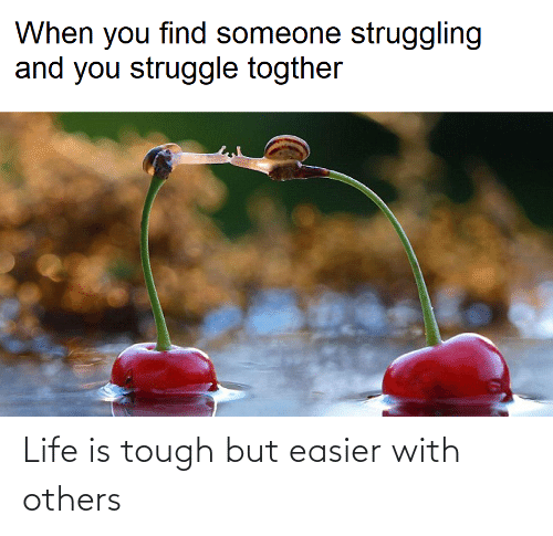 Tough: Life is tough but easier with others