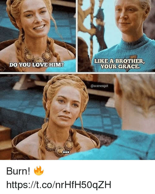 Memes, 🤖, and Brother: LIKE A BROTHER  YOUR GRACE.  DO YOU LOVEHIM  @scenesgot Burn! 🔥 https://t.co/nrHfH50qZH