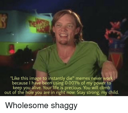 """Alive, Life, and Memes: """"Like this image to instantly die"""" memes never work  because I have been using 0.001% of my power to  keep you alive. Your life is precious. You will climb  out of the hole you are in right now. Stay strong, my child. Wholesome shaggy"""