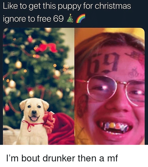 Christmas, Funny, and Free: Like to get this puppy for christmas  ignore to free 69 I'm bout drunker then a mf