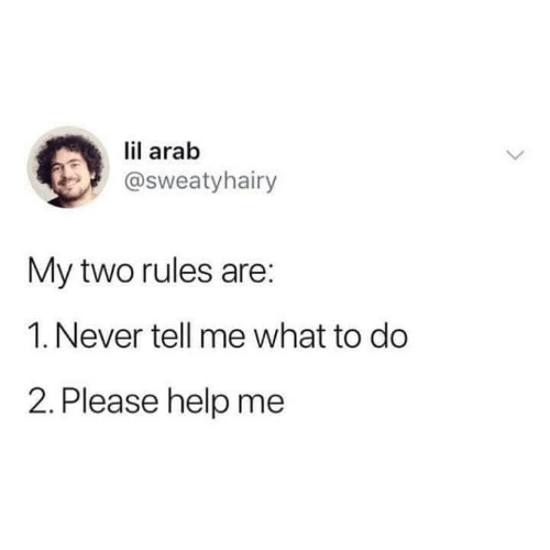 What To Do: lil arab  @sweatyhairy  My two rules are:  1. Never tell me what to do  2. Please help me
