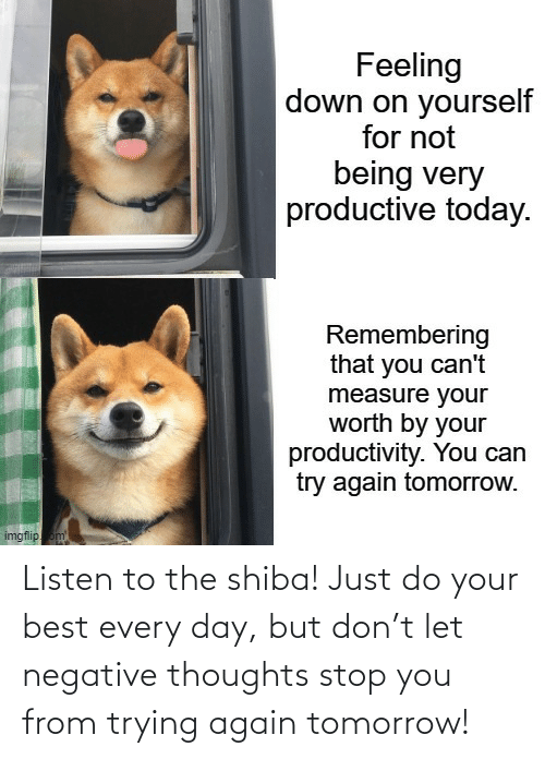 listen: Listen to the shiba! Just do your best every day, but don't let negative thoughts stop you from trying again tomorrow!