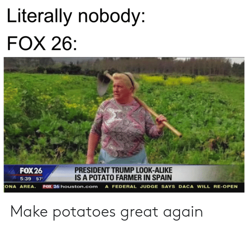 Houston, Potato, and Spain: Literally nobody:  FOX 26  PRESIDENT TRUMP LOOK-ALIKE  IS A POTATO FARMER IN SPAIN  FOX 26  5:39 57  ONA AREA  FOX 26 houston.com A FEDERAL JUDGE SAYS DACA WILL RE-OPEN Make potatoes great again