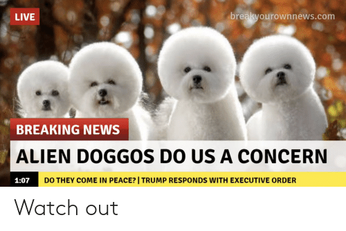 News, Watch Out, and Alien: LIVE  breakvourownnews.com  BREAKING NEWS  ALIEN DOGGOs DO US A CONCERN  1:07  DO THEY COME IN PEACE? | TRUMP RESPONDS WITH EXECUTIVE ORDER Watch out