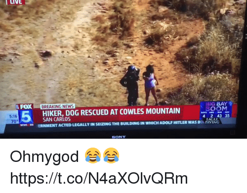 Hitlerism: LIVE  FOX BREAKING NEWS  BIG BAY  SOON  4 2 43 35  HIKER,DOG RESCUED AT COWLES MOUNTAIN  5:16  70°  EWSD ERNMENT ACTED LEGALLY IN SEIZING THE BUILDING IN WHICH ADOLF HITLER WAS BO PAVING  EAGLE  SONY Ohmygod 😂😂 https://t.co/N4aXOlvQRm