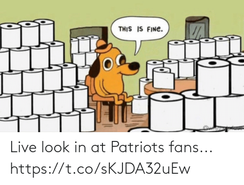 sports: Live look in at Patriots fans... https://t.co/sKJDA32uEw