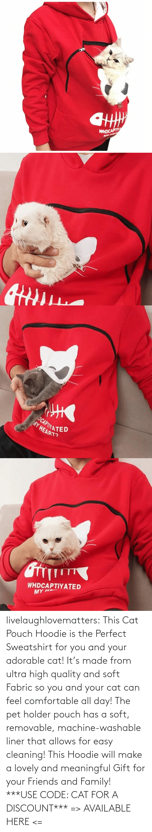 easy: livelaughlovematters: This Cat Pouch Hoodie is the Perfect Sweatshirt for you and your adorable cat! It's made from ultra high quality and soft Fabric so you and your cat can feel comfortable all day!The pet holder pouch has a soft, removable, machine-washable liner that allows for easy cleaning! This Hoodie will make a lovely and meaningful Gift for your Friends and Family! ***USE CODE: CATFOR A DISCOUNT*** => AVAILABLE HERE <=