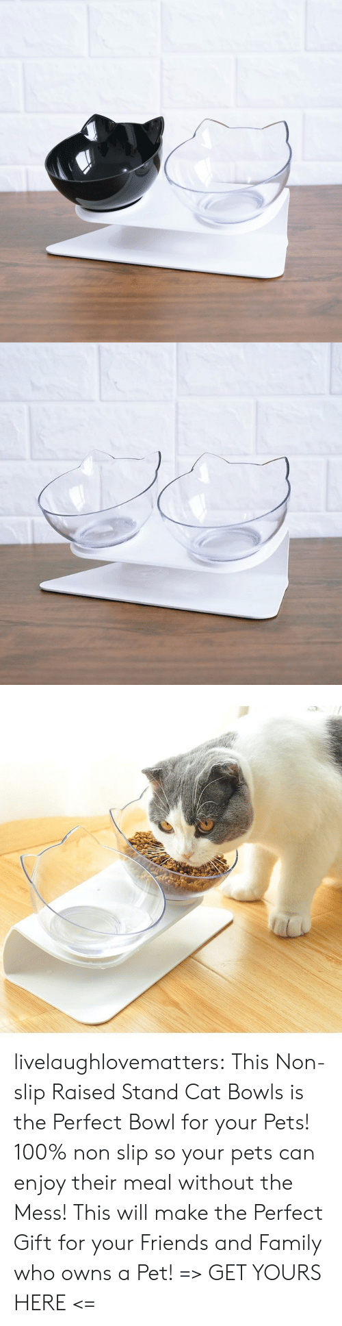 owns: livelaughlovematters: ThisNon-slip Raised Stand Cat Bowls is the Perfect Bowl for your Pets! 100% non slip so your pets can enjoy their meal without the Mess! This will make the Perfect Gift for your Friends and Family who owns a Pet! => GET YOURS HERE <=