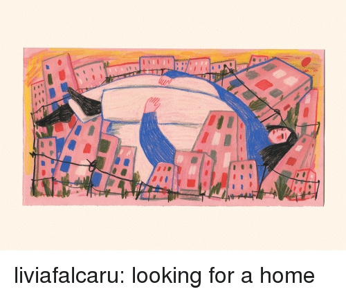 Tumblr, Blog, and Home: liviafalcaru:  looking for a home