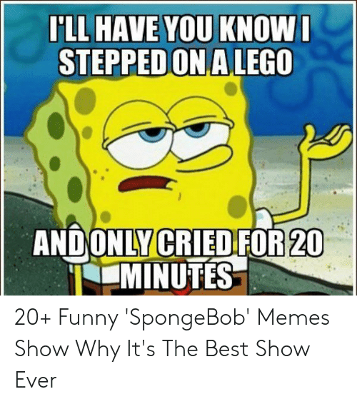 Funny, Memes, and SpongeBob: LL HAVE YOU KNOW  STEPPED ONALEGO  ANDONLY CRIED FOR 20  MINUTES 20+ Funny 'SpongeBob' Memes Show Why It's The Best Show Ever