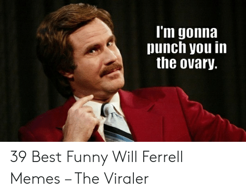 will ferrell memes: l'm gonna  punch you in  the ovary. 39 Best Funny Will Ferrell Memes – The Viraler