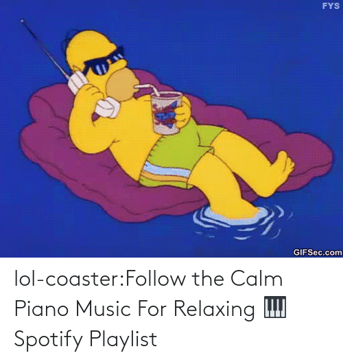open: lol-coaster:Follow the Calm Piano Music For Relaxing 🎹 Spotify Playlist