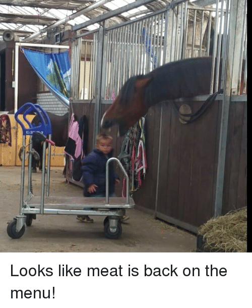 Clever Titles: Looks like meat is back on the menu!