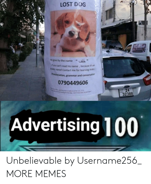 """Dank, Memes, and Target: LOST DOG  He goes by the name""""  f you can't read his name , because it's an  Arabic name! Contact me for learning Arabic:  ronunciation, grammar and conversation  Pr  0790449606  32388  Advertising 100 Unbelievable by Username256_ MORE MEMES"""