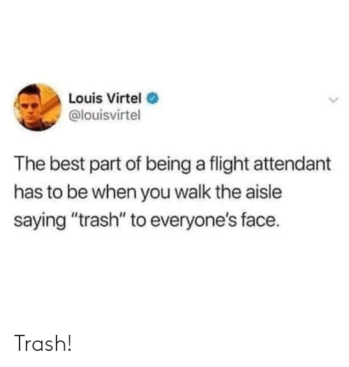 """Trash, Best, and Flight: Louis Virtel  @louisvirtel  The best part of being a flight attendant  has to be when you walk the aisle  saying """"trash"""" to everyone's face. Trash!"""