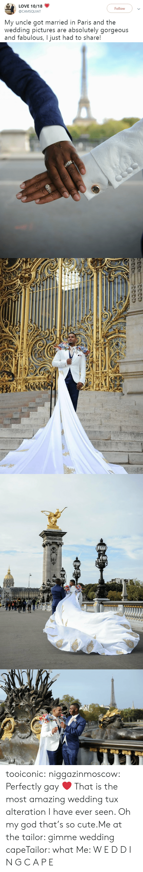 Cute, God, and Love: LOVE 10/18  Follow  @CAMSQUIAT  My uncle got married in Paris and the  wedding pictures are absolutely gorgeous  and fabulous, I just had to share! tooiconic: niggazinmoscow: Perfectly gay❤️  That is the most amazing wedding tux alteration I have ever seen.    Oh my god that's so cute.Me at the tailor: gimme wedding capeTailor: what Me: W E D D I N G  C A P E
