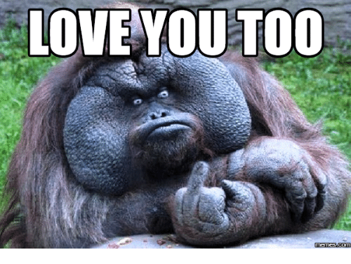 Love You To Meme