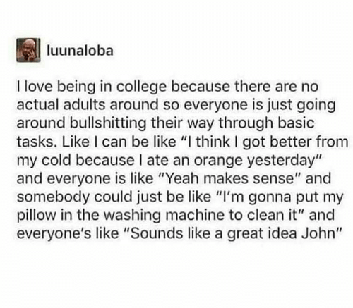 """Im Gonna: luunaloba  I love being in college because there are no  actual adults around so everyone is just going  around bullshitting their way through basic  tasks. Like I can be like """"I think I got better from  my cold because I ate an orange yesterday""""  and everyone is like """"Yeah makes sense"""" and  somebody could just be like """"I'm gonna put my  pillow in the washing machine to clean it"""" and  everyone's like """"Sounds like a great idea John"""""""