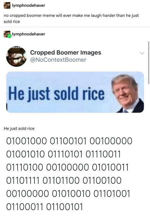 Meme, Tumblr, and Images: lymphnodehaver  no cropped boomer meme will ever make me laugh harder than he just  sold rice  lymphnodehaver  AUST SIT  Cropped Boomer Images  @NoContextBoomer  He just sold rice  He just sold rice 01001000 01100101 00100000 01001010 01110101 01110011 01110100 00100000 01010011 01101111 01101100 01100100 00100000 01010010 01101001 01100011 01100101