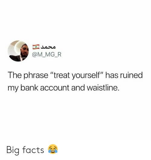 "Facts, Memes, and Bank: @M_MG_FR  The phrase ""treat yourself"" has ruined  my bank account and waistline. Big facts 😂"