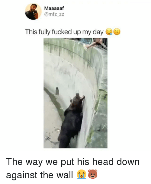 Head, Memes, and 🤖: Maaaaaf  @mfz_zz  This fully fucked up my day The way we put his head down against the wall 😭🐻