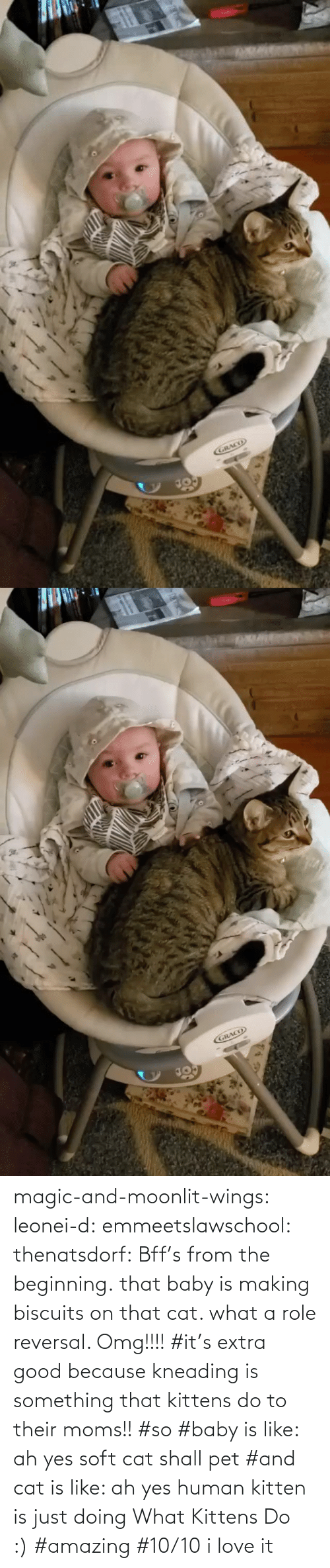 Baby: magic-and-moonlit-wings: leonei-d:  emmeetslawschool:  thenatsdorf: Bff's from the beginning. that baby is making biscuits on that cat. what a role reversal.    Omg!!!!     #it's extra good because kneading is something that kittens do to their moms!! #so #baby is like: ah yes soft cat shall pet #and cat is like: ah yes human kitten is just doing What Kittens Do :) #amazing #10/10 i love it