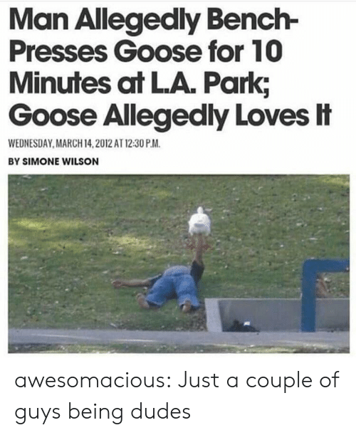 Wednesday: Man Allegedly Bench-  Presses Goose for 10  Minutes at LA. Park;  Goose Allegedly Loves忄  WEDNESDAY MARCH 14,2012 AT 12:30 P.M  BY SIMONE WILSON awesomacious:  Just a couple of guys being dudes