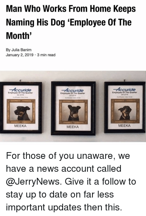 Funny, News, and Date: Man Who Works From Home Keeps  Naming His Dog 'Employee Of The  Month  By Julia Banim  January 2, 2019 3 min read  Accuride  Accuride  Accuride  Employee Of The Quarter  02-2016  Employee Of The Quarter  032018  Employee Of The Quarter  04-2016  MEEKA  MEEKA  MEEKA For those of you unaware, we have a news account called @JerryNews. Give it a follow to stay up to date on far less important updates then this.