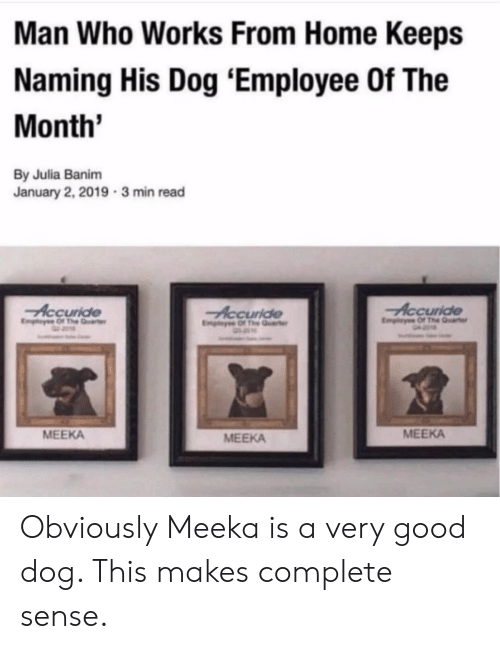 Good, Home, and Dog: Man Who Works From Home Keeps  Naming His Dog 'Employee Of The  Month  By Julia Banim  January 2, 2019 3 min read  Accuride  Accuride  MEEKA  MEEKA  MEEKA Obviously Meeka is a very good dog. This makes complete sense.