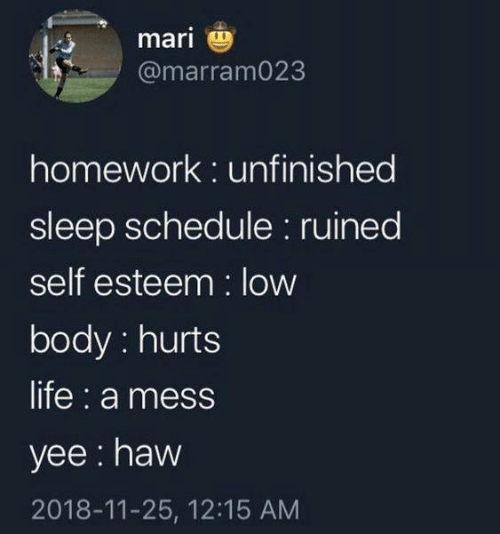 Life, Yee, and Schedule: mari  @marram023  homework: unfinished  sleep schedule: ruined  self esteem: low  body: hurts  life: a mess  yee: haw  2018-11-25, 12:15 AM