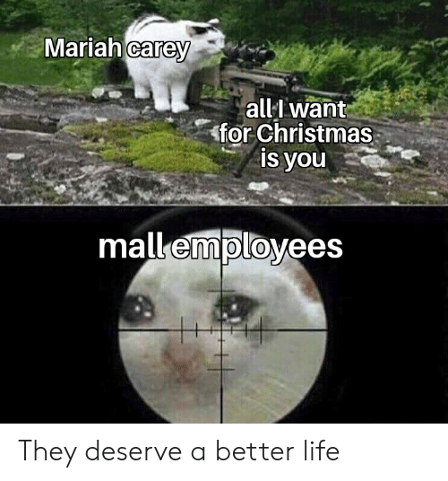 mariah carey: Mariah carey  all want  for Christmas  is you  mall employees They deserve a better life