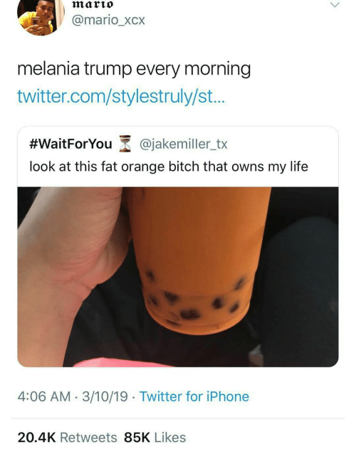 Bitch, Iphone, and Life: marto  @mario_xcx  melania trump every morning  twitter.com/stylestruly/st...  #WaitForYou-@jakemiler_tx  look at this fat orange bitch that owns my life  4:06 AM- 3/10/19 Twitter for iPhone  20.4K Retweets 85K Likes