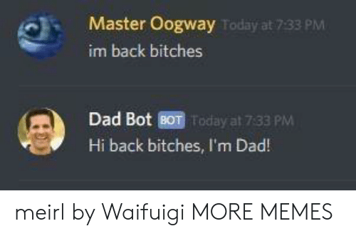 Dad, Dank, and Memes: Master Oogway  im back bitches  Today at 7:33 PM  Dad Bot BOT Today at 7:33 PM  Hi back bitches, I'm Dad! meirl by Waifuigi MORE MEMES