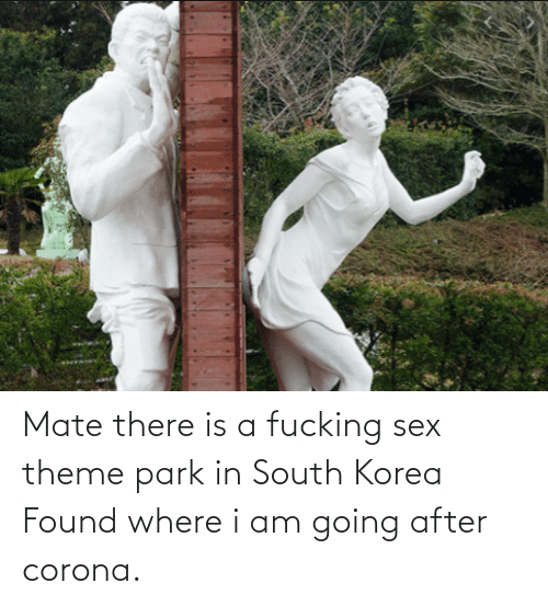 Sex: Mate there is a fucking sex theme park in South Korea Found where i am going after corona.
