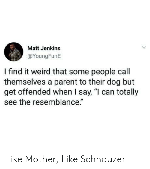 "Weird, Schnauzer, and Dog: Matt Jenkins  @YoungFunE  I find it weird that some people call  themselves a parent to their dog but  get offended when I say, ""l can totally  see the resemblance."" Like Mother, Like Schnauzer"