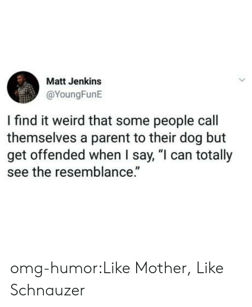 """Omg, Tumblr, and Weird: Matt Jenkins  @YoungFunE  I find it weird that some people call  themselves a parent to their dog but  get offended when I say, """"l can totally  see the resemblance."""" omg-humor:Like Mother, Like Schnauzer"""