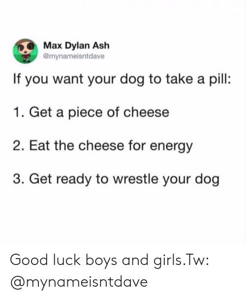 Ash, Energy, and Girls: Max Dylan Ash  @mynameisntdave  If you want your dog to take a pil:  1. Get a piece of cheese  2. Eat the cheese for energy  3. Get ready to wrestle your dog Good luck boys and girls.Tw: @mynameisntdave