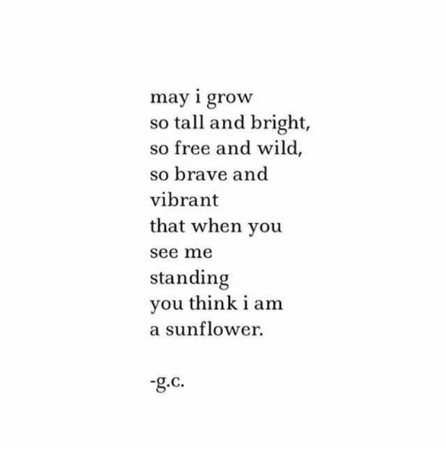 Brave, Free, and Wild: may i grow  so tall and bright,  so free and wild,  so brave and  vibrant  that when you  see ne  standing  you think i am  a sunflower.  g.c