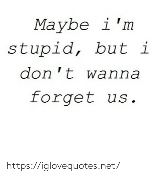 Net, Don, and Href: Maybe i 'm  stupid, but i  don 't wanna  forget us. https://iglovequotes.net/