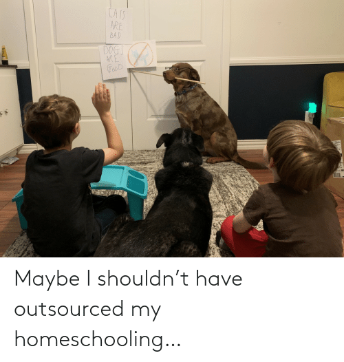 Have: Maybe I shouldn't have outsourced my homeschooling…