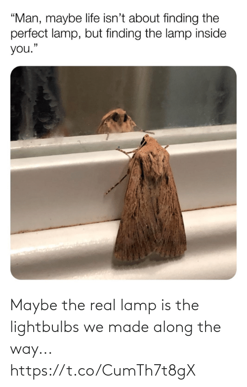 real: Maybe the real lamp is the lightbulbs we made along the way... https://t.co/CumTh7t8gX