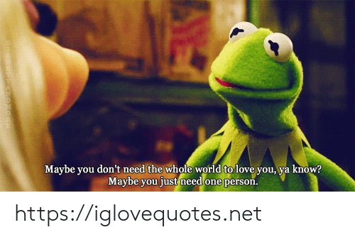 Love, World, and Net: Maybe you don't need the whole world to love you, ya know?  Maybe you just need one person. https://iglovequotes.net