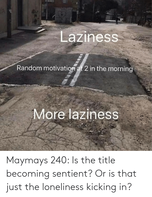 Title: Maymays 240: Is the title becoming sentient? Or is that just the loneliness kicking in?