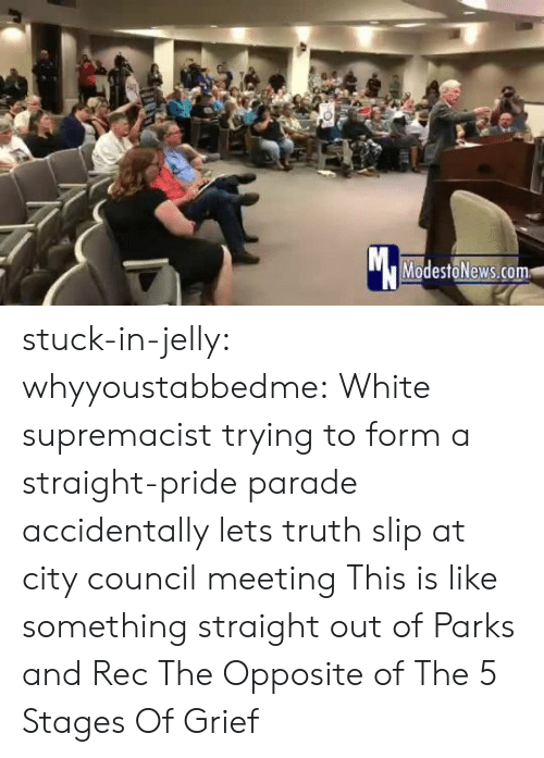 Parks: Mc  ModestoNews.com stuck-in-jelly:  whyyoustabbedme:   White supremacist trying to form a straight-pride parade accidentally lets truth slip at city council meeting   This is like something straight out of Parks and Rec       The Opposite of The 5 Stages Of Grief