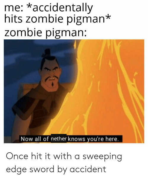 Zombie, Sword, and Once: me: *accidentally  hits zombie pigman*  Zombie pigman:  Now all of nether knows you're here. Once hit it with a sweeping edge sword by accident