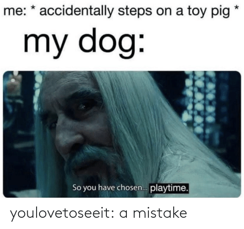 Target, Tumblr, and Blog: me: * accidentally steps on a toy pig  my dog:  So you have chosen. playtime. youlovetoseeit:  a mistake