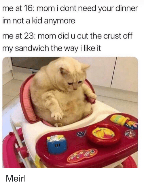 MeIRL, Mom, and Sandwich: me at 16: mom i dont need your dinner  im not a kid anymore  me at 23: mom did u cut the crust off  my sandwich the way i like it Meirl